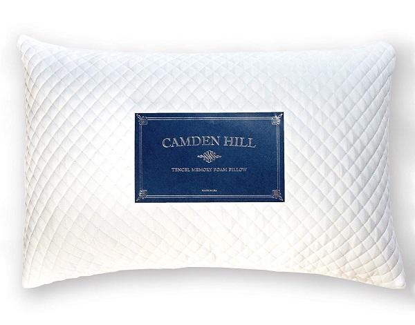 Memory Foam Tencel Pillow by Camden Hill